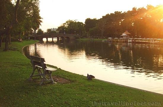 Chatuchak Park: A Nature Retreat in BangkokThe Travelling Feet