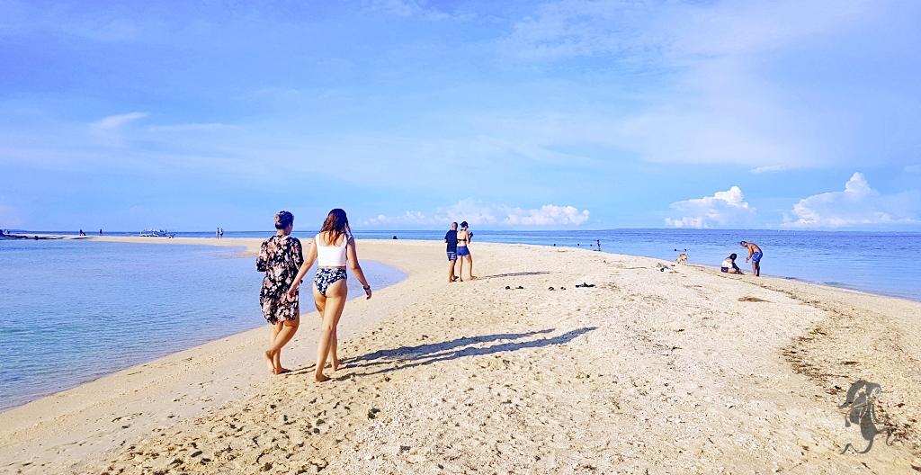 reasons to visit cebu